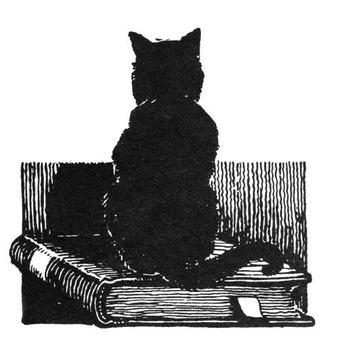Cat on book engraving